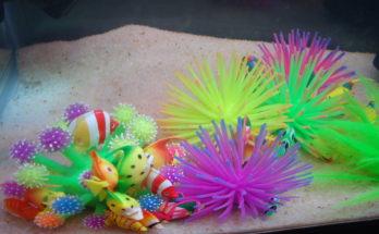 dekorace do akvária